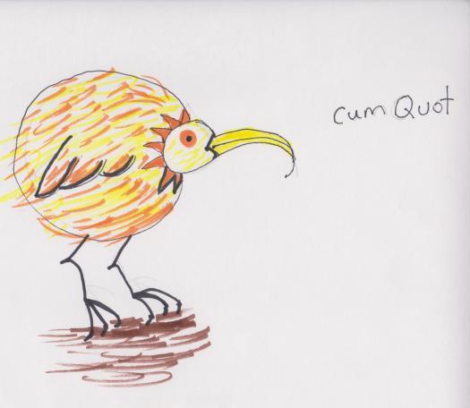 Cumquot 001
