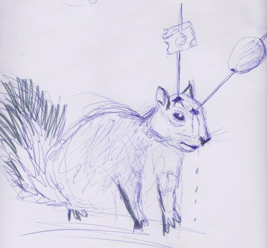 Silky Squirrel 001